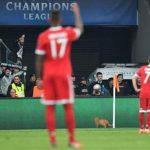 Un gato detuvo partido entre Besiktas y Bayern por la Champions